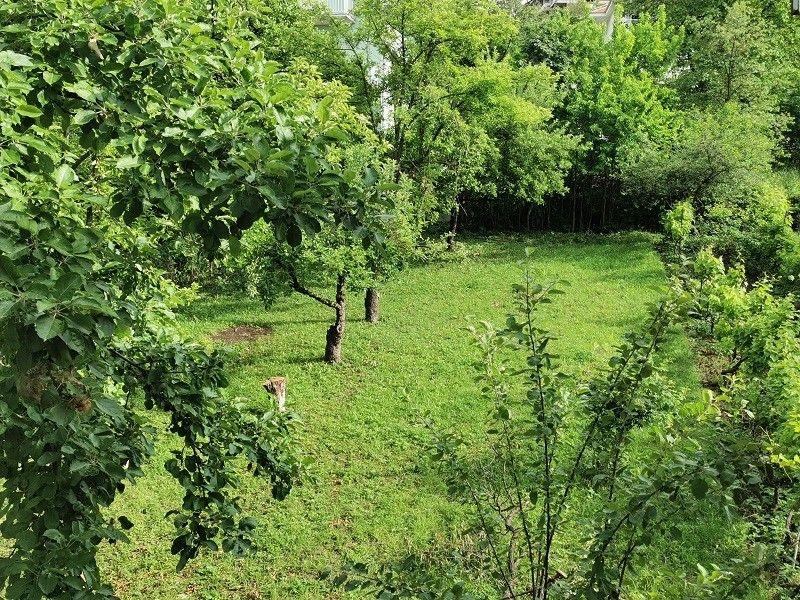 banje/sokobanja/breza/1024x-1591602139-breza-dvoriste.jpg