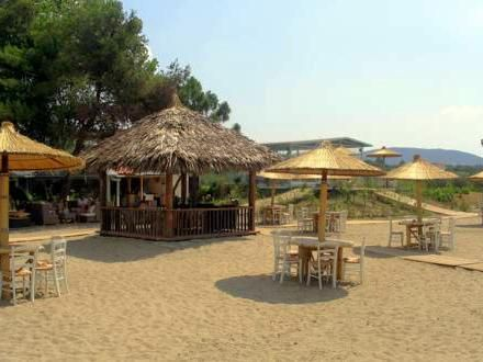 hoteli grcka/gerakini/blue beach/download-3.jpg