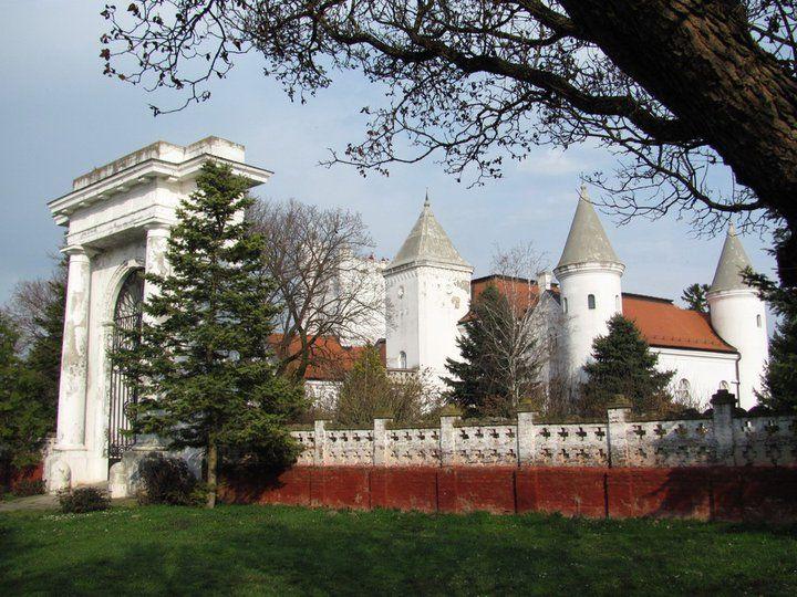 dvorac-dundjerski-kod-novog-beceja-vii.jpg