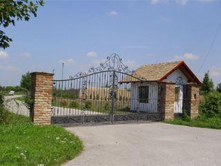 jezera/palić/đorđević/1.jpg
