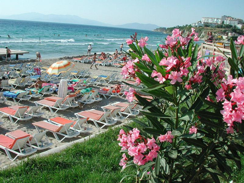 Ladies-beach-kusadasi2.jpg