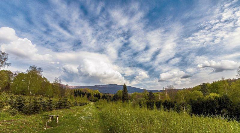 planine/jastrebac/jastrebac-018.jpg