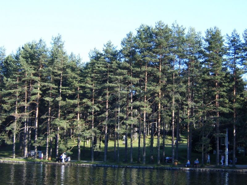 zimovanje/serbia/zlatibor/park-jezero-zlatibor.jpg
