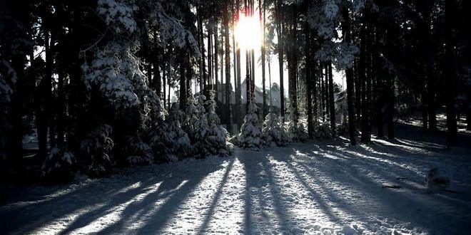 zimovanje/serbia/zlatibor/zima-planina-planine-sneg-priroda-idila-turizam-turisticki-660x330.jpg